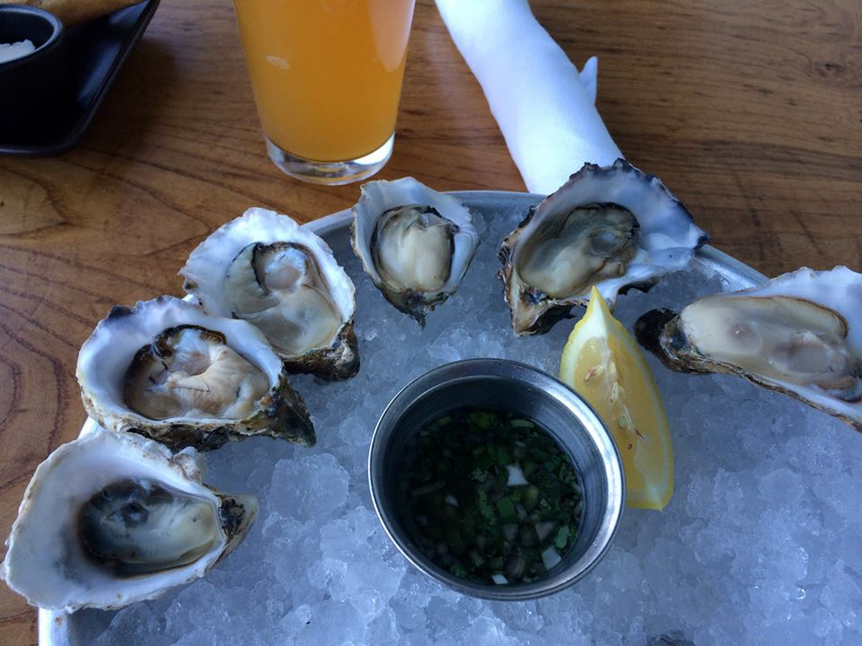 Oysters from Hog Island Oyster Co.